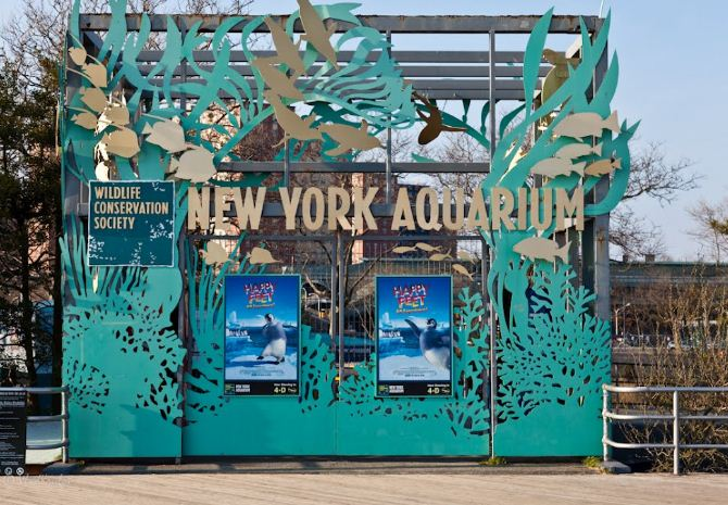 New York Zoos and Aquarium Guest Experience Survey